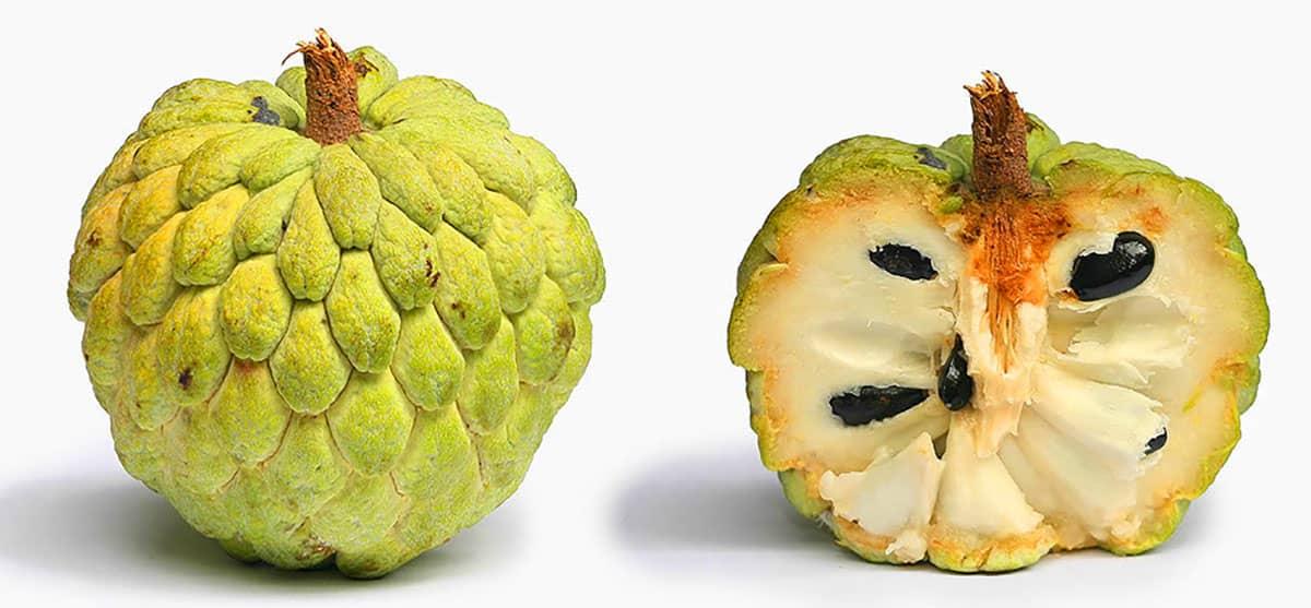 тропический нойна фрукт