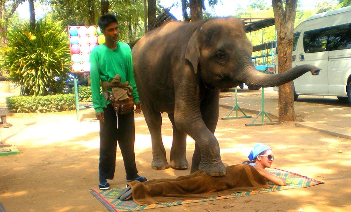 Чудесная деревня слонов в паттайе