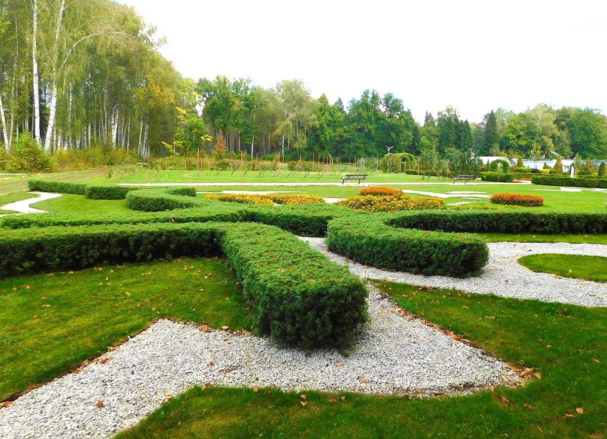 Живописный ботанический сад йошкар ола