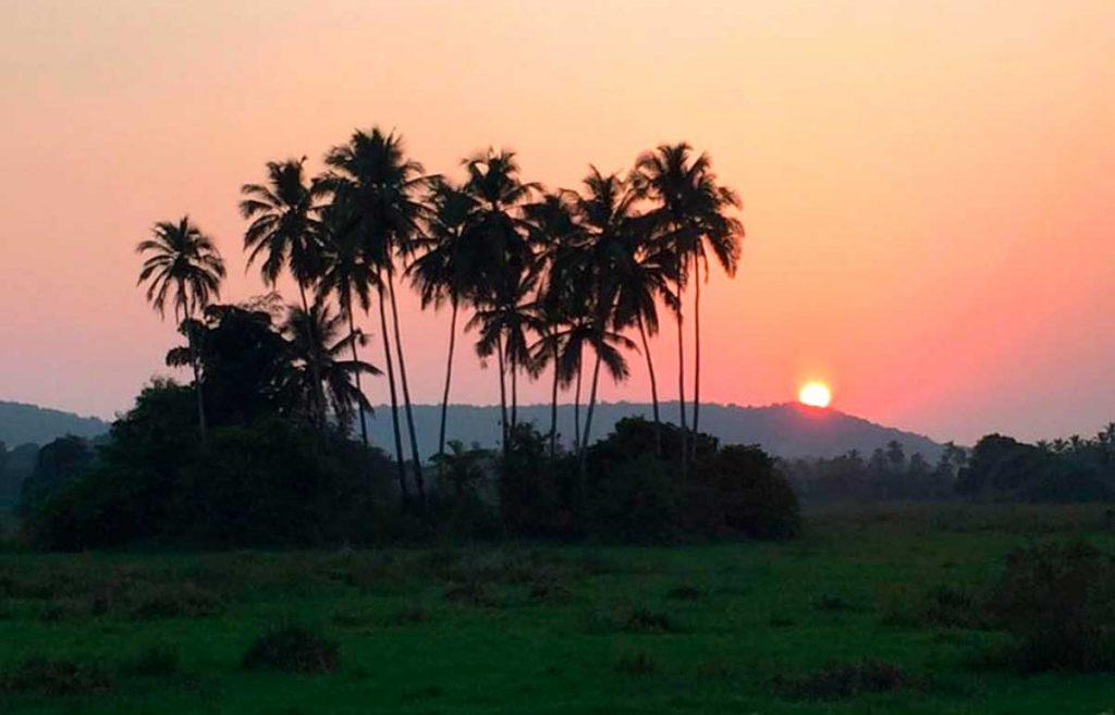 Туристические визы в Индию есть на 1, 3 и 6 месяцев