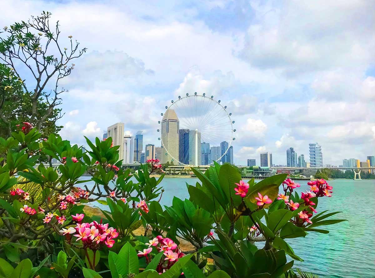 жизнь в Сингапуре для русских - в стране чудес