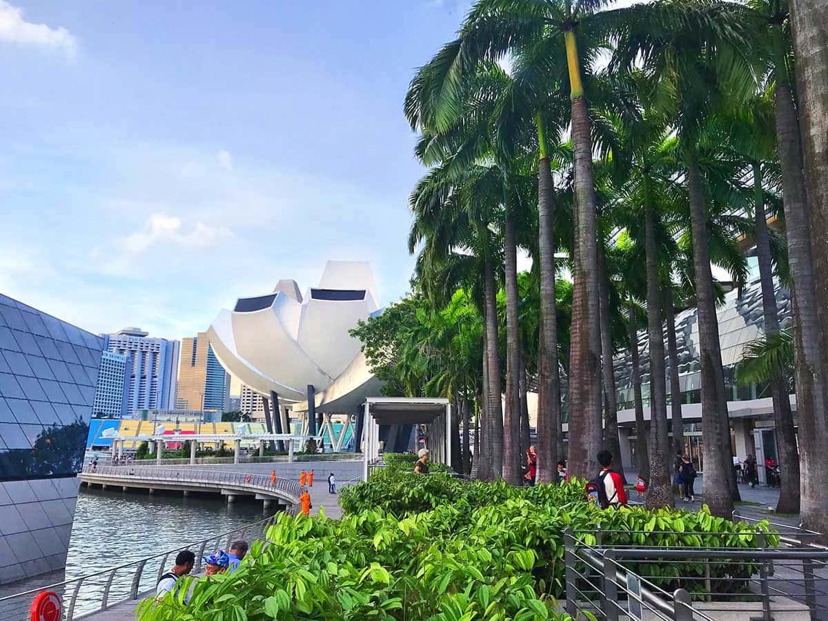 востребованные специальности в Сингапуре