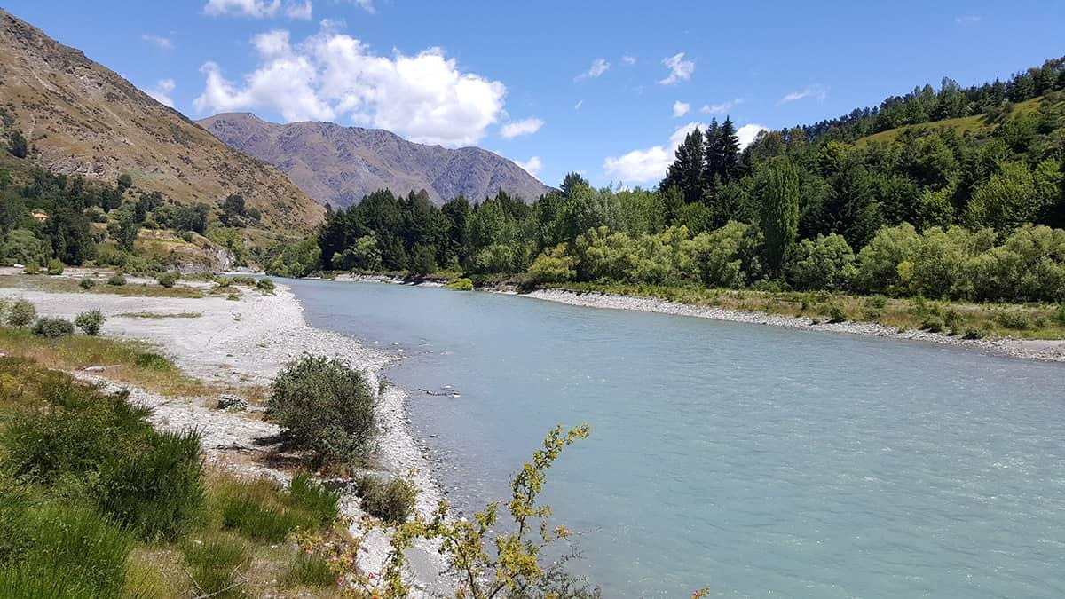 Интервью про переезд в новую зеландию