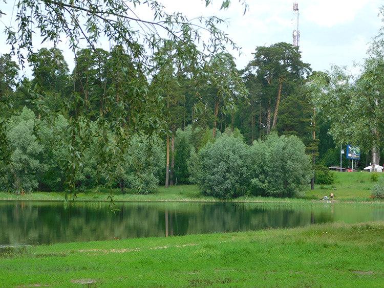 озеро лебяжье отдых