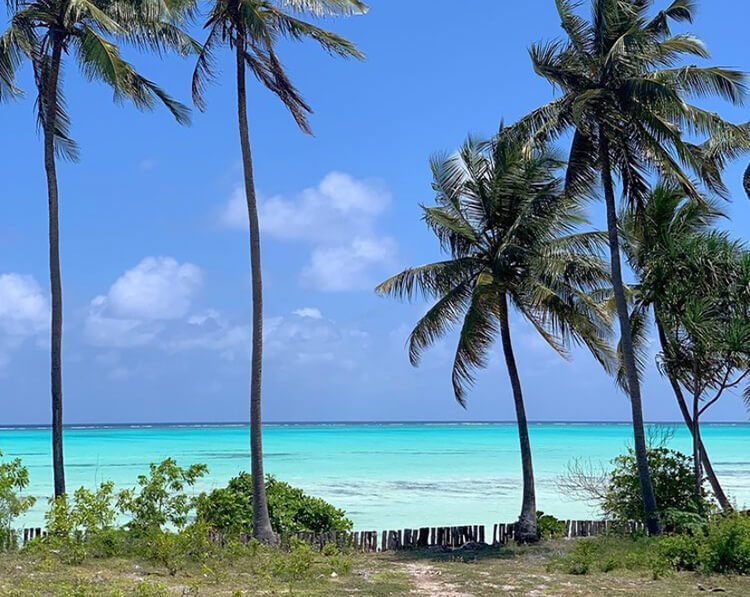 лучшие пляжи занзибара