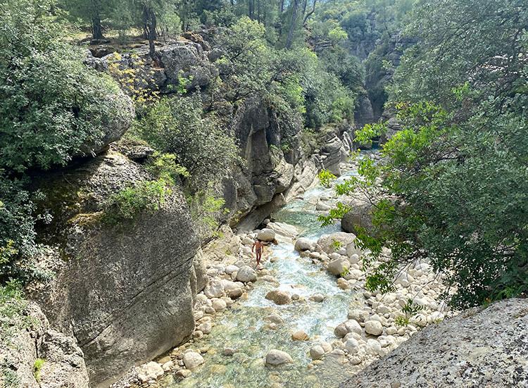 тазы каньон отзывы
